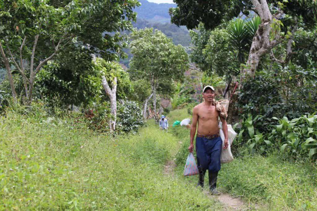 El Neto 2 Nicaraguan Coffee