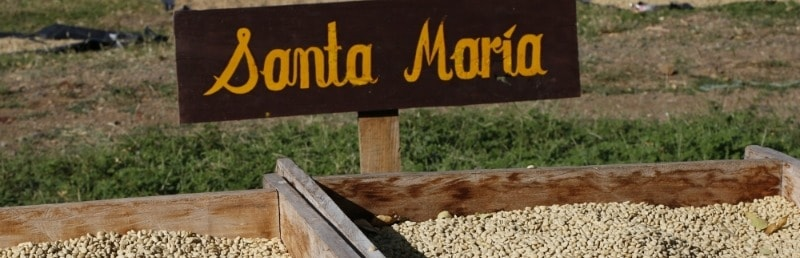 Nicaragua Santa Maria – Coffee with Hints of Caramel, Orange, and Toffee