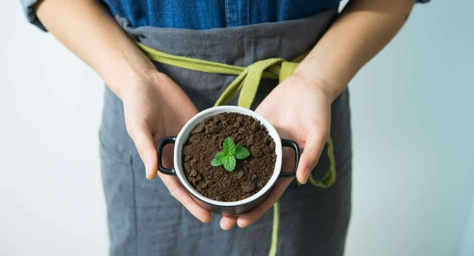 14 Creative Ways to use up Leftover Coffee Grounds