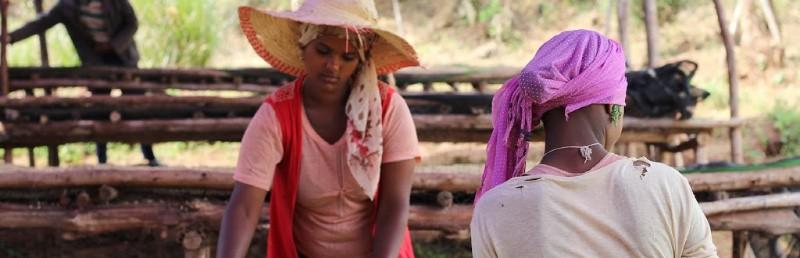 Ethiopia Nano Challa with notes of Pomegranate, black currant, and orange blossom